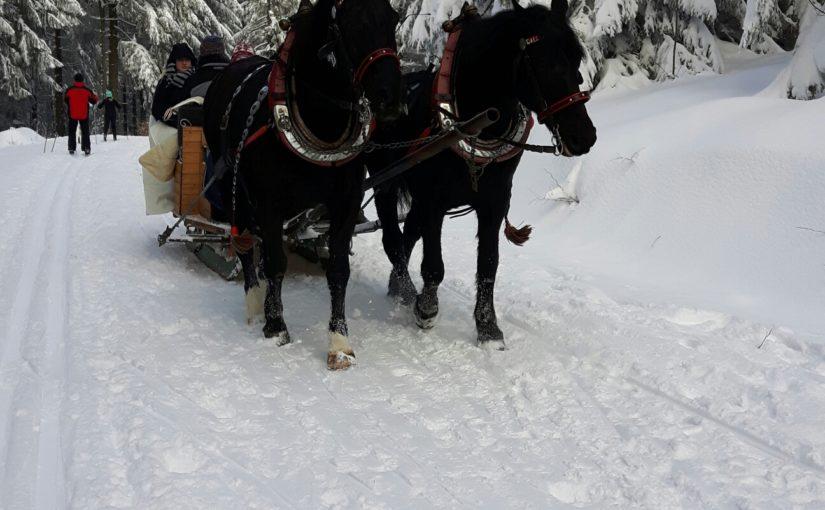 Winterwelt Masserberg